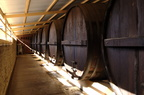 Wine Barrels at Seppeltsfield