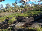 Whistlepipe Gully, Kalamunda